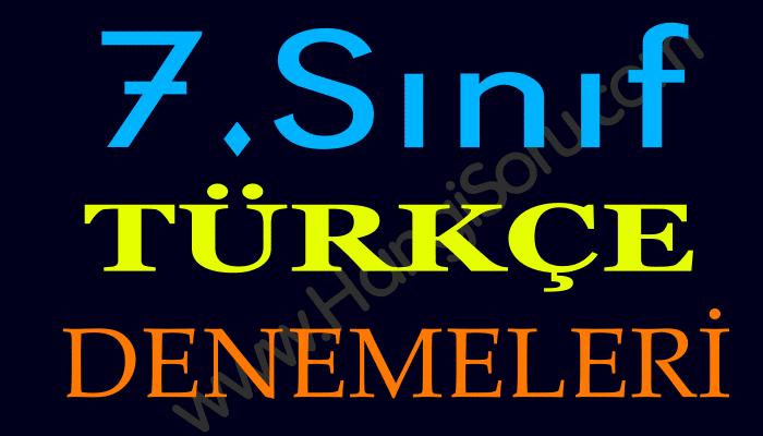 7. Sınıf Türkçe Deneme Sınavı ve Cevapları