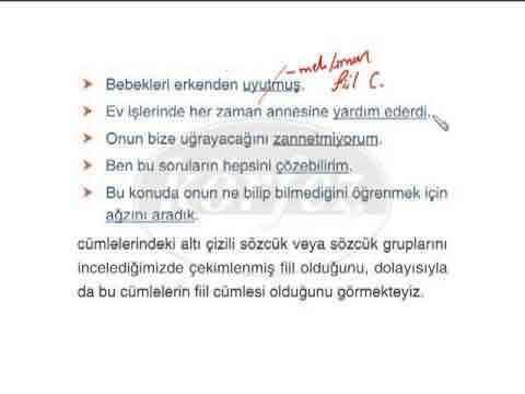 8. Sınıf Türkçe Cümle Çeşitleri Konu Anlatımı