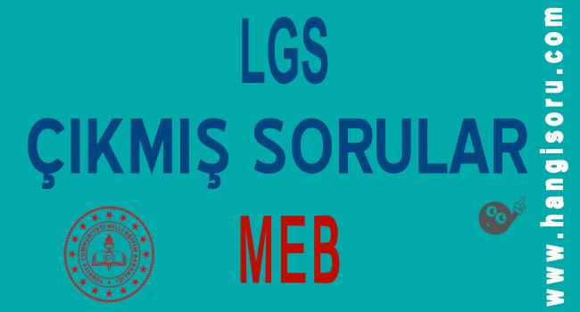LGS Çıkmış Sorular 2019-2020