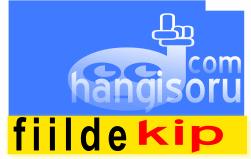 7 Sinif Fiilde Kip Calisma Kagitlari 2019 2020 Hangisoru Com