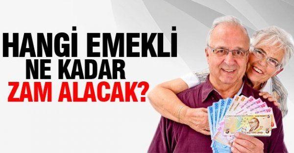 Hangi Emekli Ne Kadar Zam Alacak? (2016 Emekli Zammı)