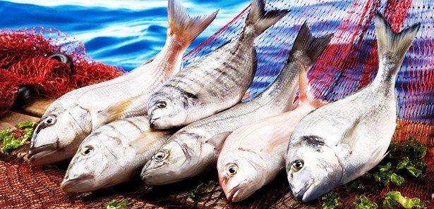 Hangi Mevsimde Hangi Balık Yenir? Tablo!