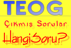 teog-cikmis-sorular